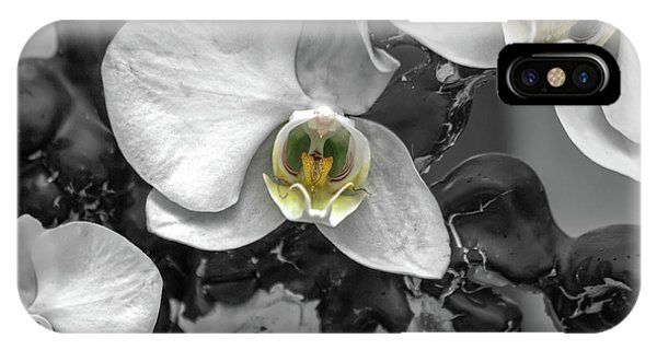 Alive iPhone Case - Orchids Elegant Delicate Beauties by Betsy Knapp
