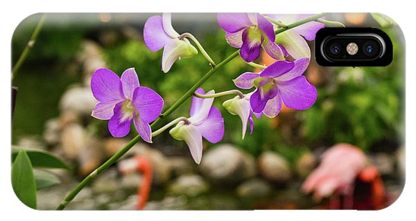 Orchids In Paradise IPhone Case