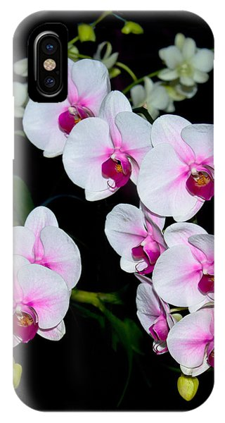 Orchids On Black IPhone Case