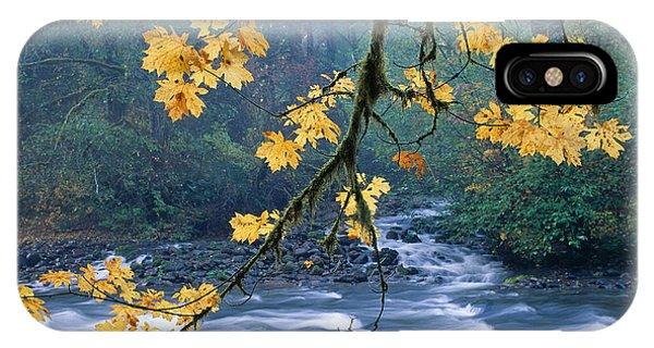 Oregon, Cascade Mountain IPhone Case