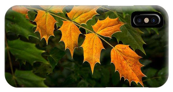 Oregon Grape Autumn IPhone Case