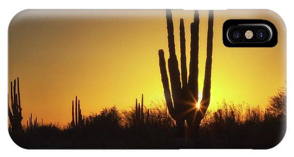 Organ Pipe Cactus IPhone Case