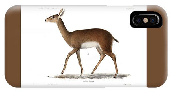 IPhone Case featuring the drawing Oribi, A Small African Antelope by J D L Franz Wagner