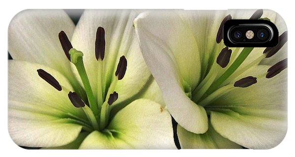 Oriental Lily Named Endless Love IPhone Case