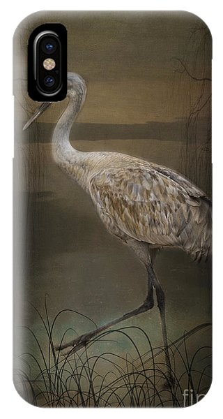 Oriental Sandhill Crane IPhone Case