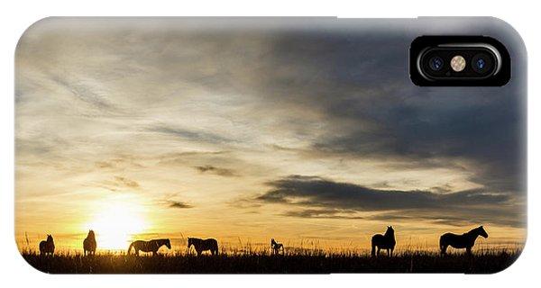 Osage Horses IPhone Case