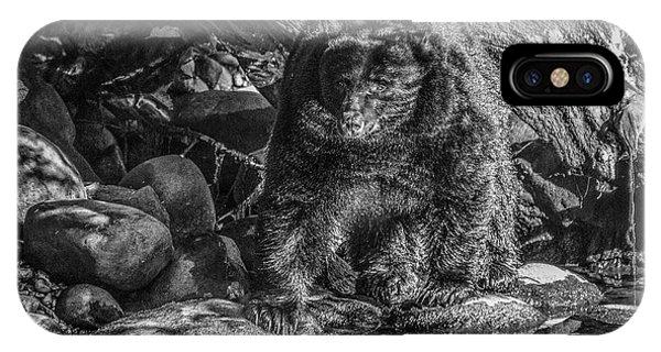 Oservant Black Bear  IPhone Case