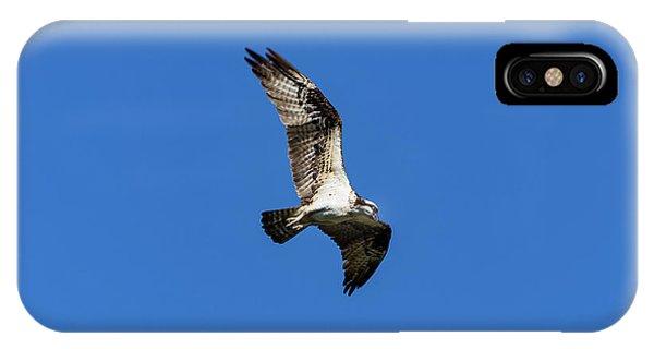 Osprey 5 IPhone Case