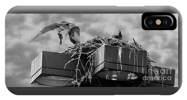 Osprey Carrying Fish To Nest IPhone Case