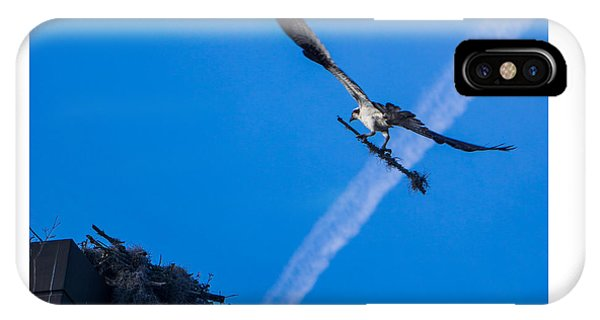 Osprey Carrying Stick To Nest IPhone Case