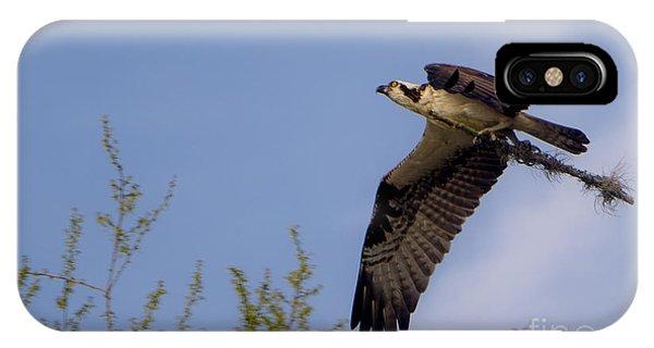 Osprey Collecting Sticks IPhone Case