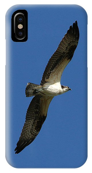 IPhone Case featuring the photograph Osprey In Blue Sky by William Selander