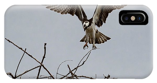Osprey Landing IPhone Case