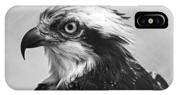 Osprey iPhone Case - Osprey Monochrome Portrait by Chris Flees