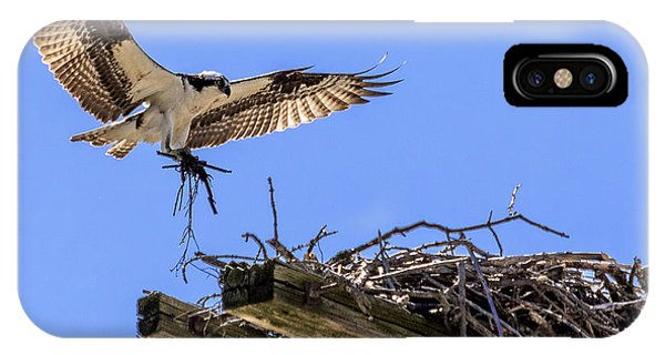 Osprey Nest Building IPhone Case