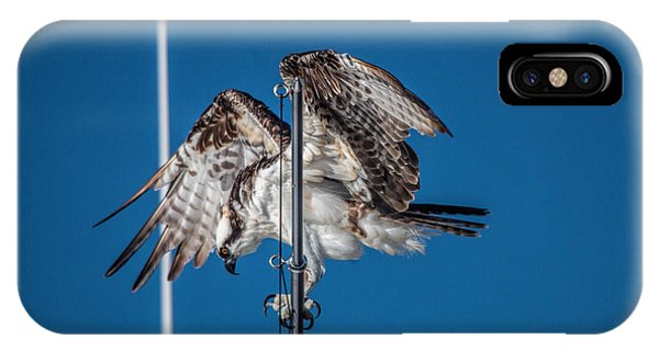 Osprey On The Boat Rod IPhone Case