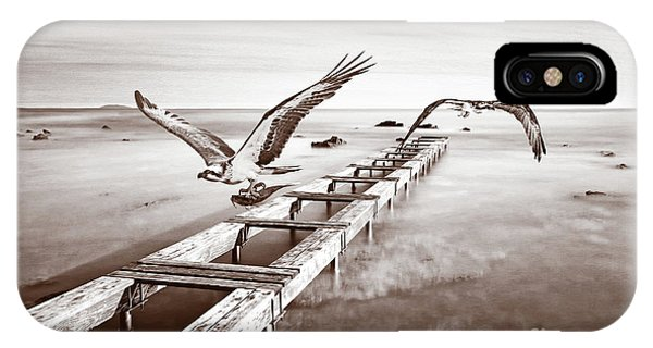 Ospreys iPhone Case - Osprey On The Move Bw by Laura D Young