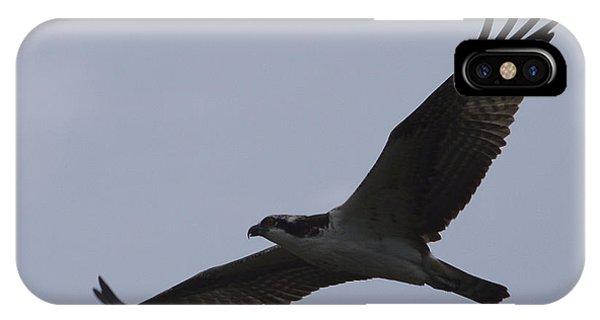 Osprey On The Tygart IPhone Case