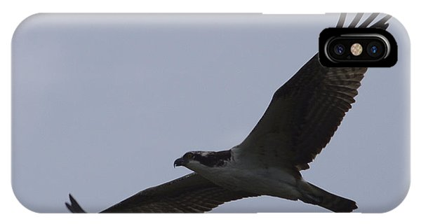 Osprey On The Tygart IPhone Case