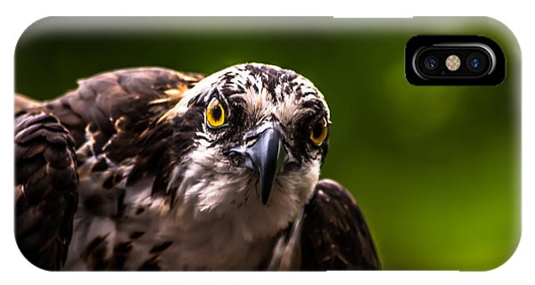 Osprey Profile 2 IPhone Case