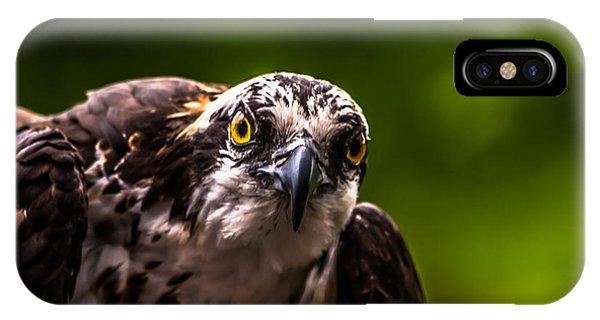 Osprey Profile 2 IPhone Case