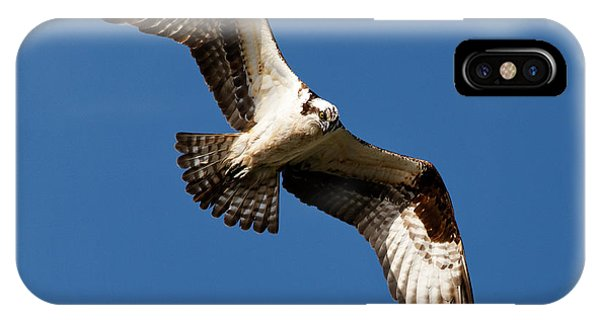 IPhone Case featuring the photograph Osprey - Soaring by Sue Harper