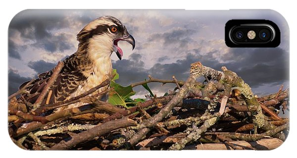 Osprey Talk IPhone Case