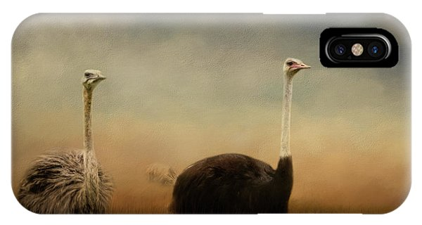 Ostrich Couple IPhone Case