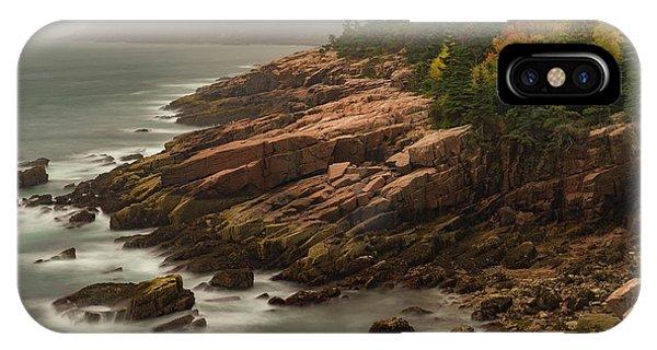 Otter Cliffs IPhone Case