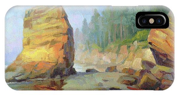 Otter Rock Beach IPhone Case