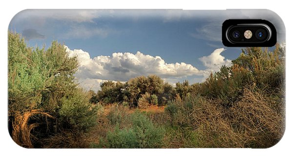 Out On The Mesa 4 IPhone Case