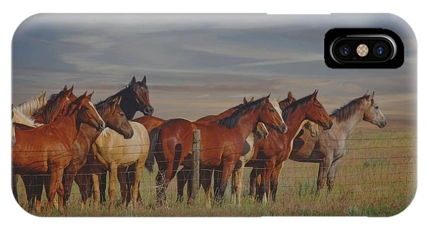 Over The Fenceline IPhone Case
