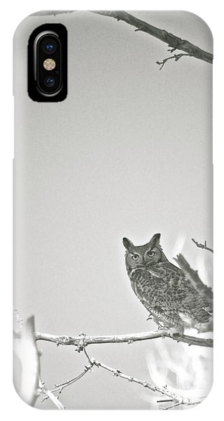Owl Be Seeing You IPhone Case