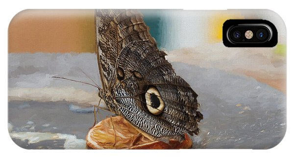 IPhone Case featuring the photograph Owl Butterfly-1 by Paul Gulliver