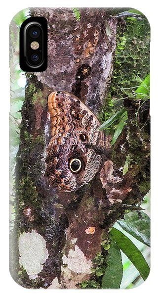 Owl Butterfly On A Tree IPhone Case