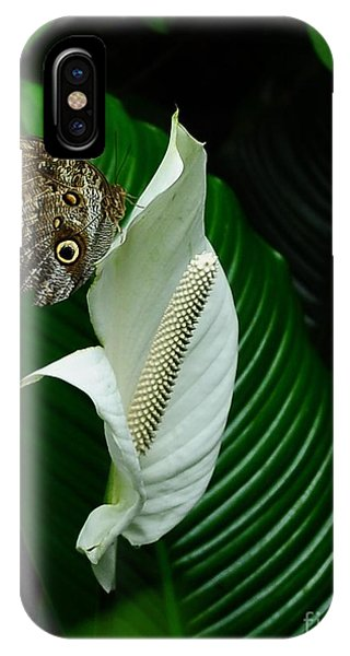 Owl Butterfly On Calla Lily IPhone Case