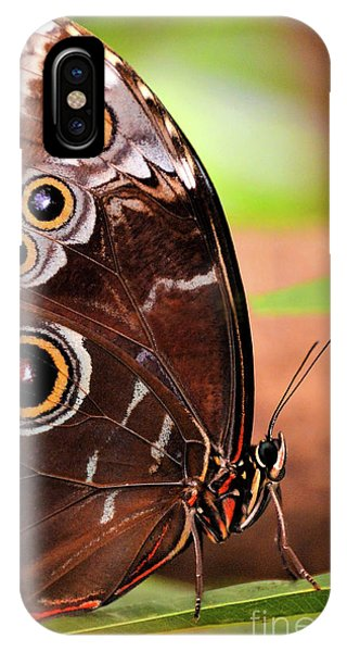 Owl Butterfly Portrait IPhone Case