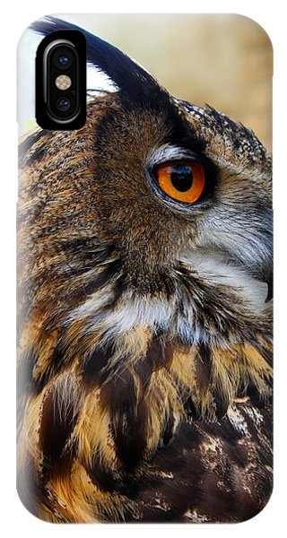 Owl-cry IPhone Case