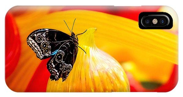 Wings iPhone Case - Owl Eye Butterfly On Colorful Glass by Tom Mc Nemar