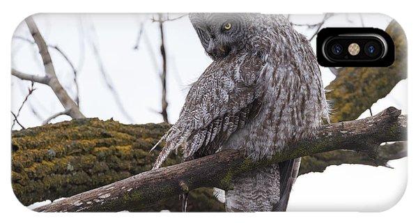 Owl Scowl IPhone Case