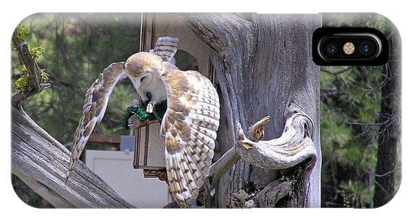 Owl Takeoff IPhone Case