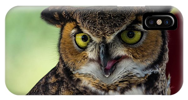 Owl Tongue IPhone Case
