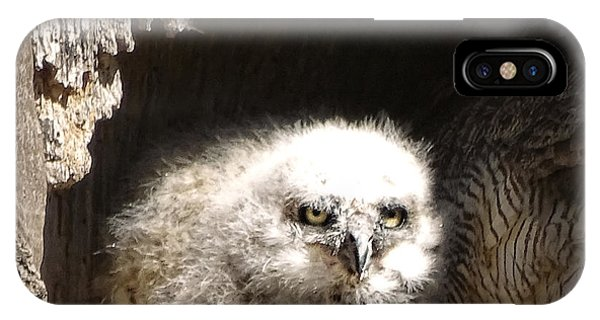 Owlet IPhone Case