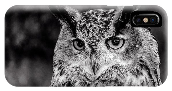 IPhone Case featuring the photograph Owls Eyes  by Cliff Norton