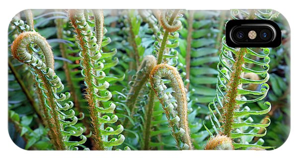 Pacific Ferns IPhone Case