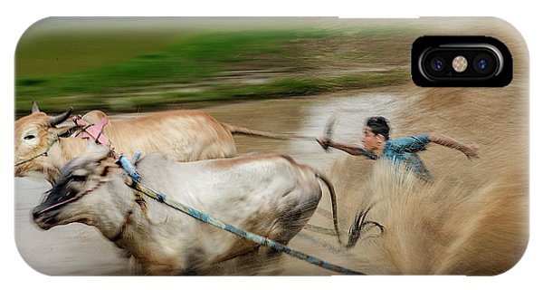 Pacu Jawi Bull Race Festival IPhone Case