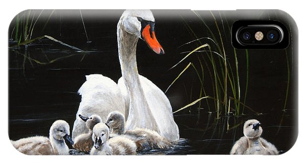 Goslings iPhone Case - Paddling To A Different Drummer by Dreyer Wildlife Print Collections