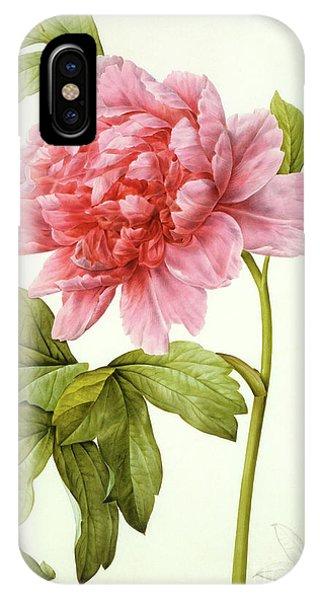 Redoute iPhone Case - Paeonia Suffruticosa by Pierre Joseph Redoute