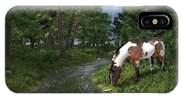 Paint Horse By The Forest Stream IPhone Case