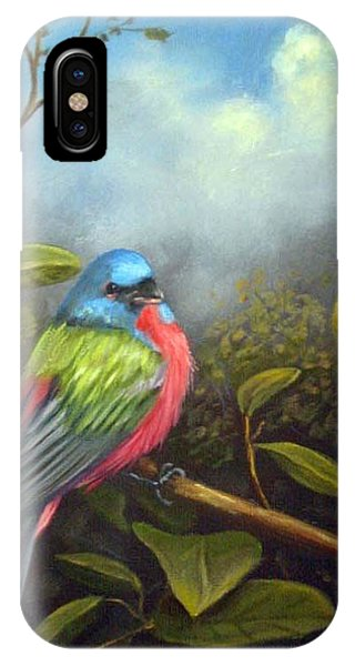 Painted Buenting IPhone Case
